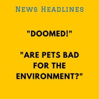 News Headlines
